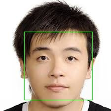 crop detected face image using four points in opencv java