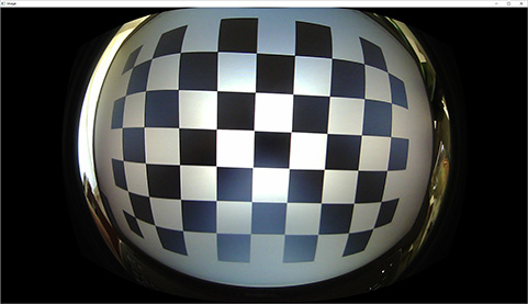 Detect faces more accurately in ~180 degree fisheye camera image by