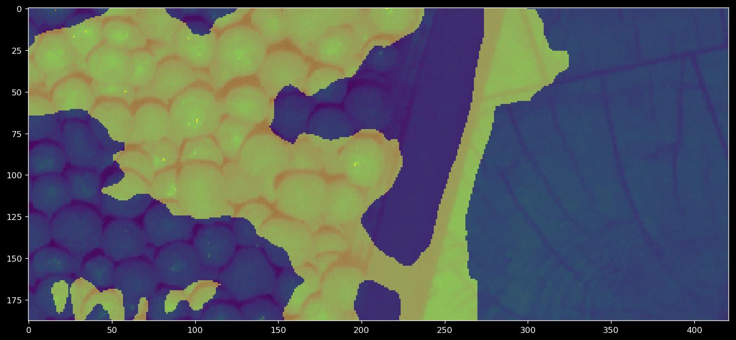 Algorithm recommendation for texture analysis/segmentation - OpenCV